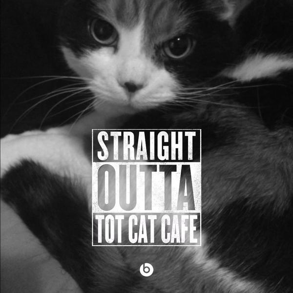 http://www.totthecatcafe.com/